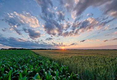 Sunset on Fields near City