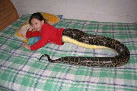 fot.: hoax-slayer.com