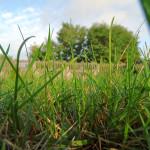 Złota zasada letniego podrywu